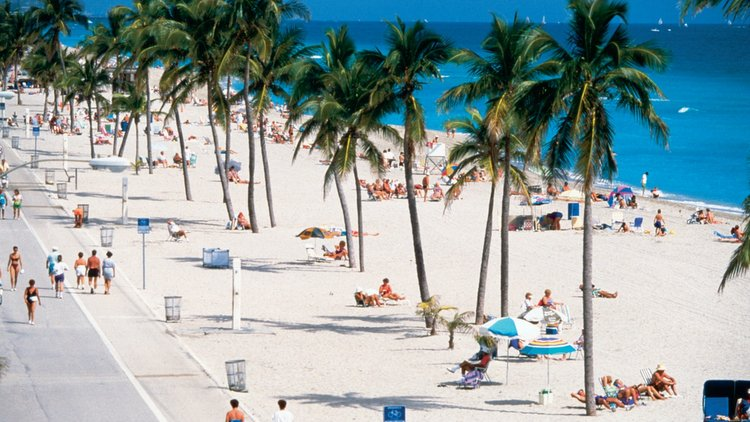 Hollywood Miami Beach Hotels