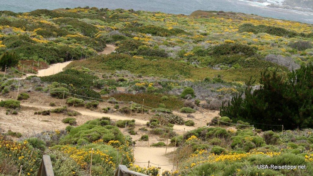 Pacific Coast Highway - California State Route 1 Kleine Parks sind auch zum Spazieren angelegt.